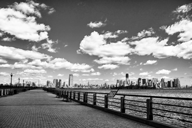 New York City Skyline, World Famous City Skylines, Tamara Young Photographer